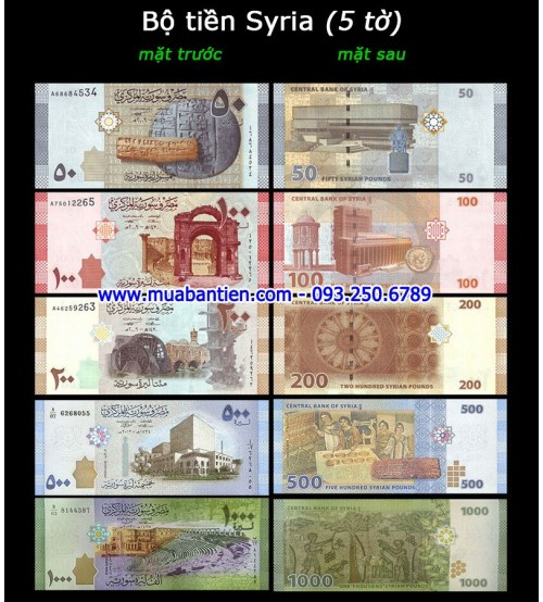 Bộ tiền Syria 5 tờ 50 100 200 500 1000 Pounds