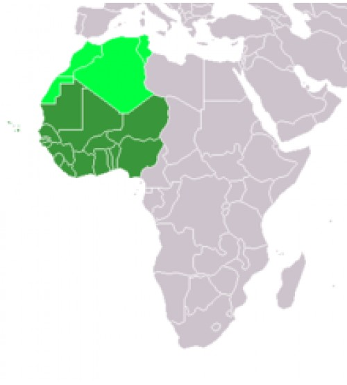 West African States - Tây Phi