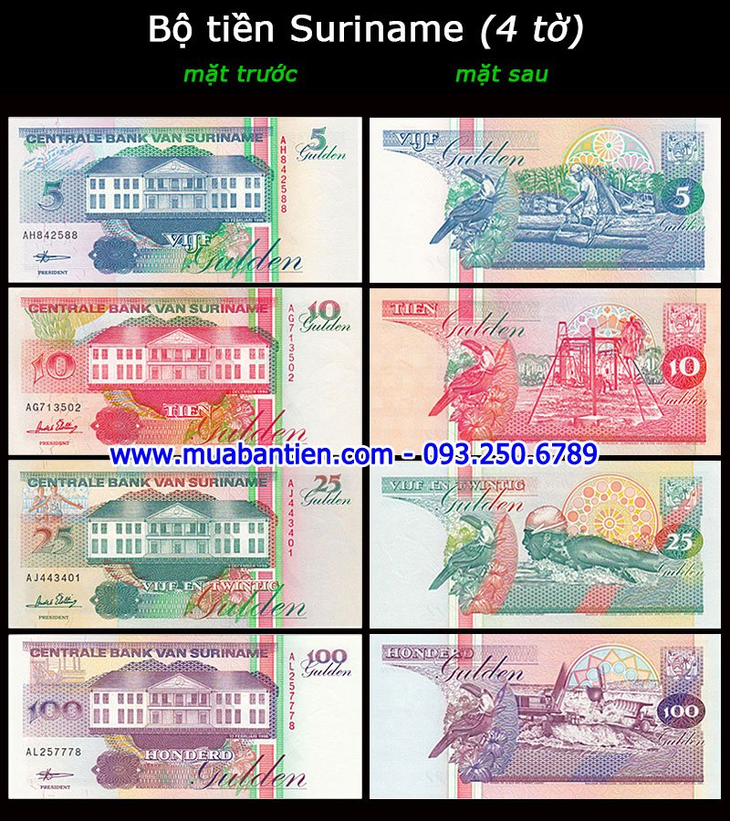 Bộ tiền Syria 3 tờ 50 100 200 Pounds